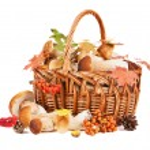 Mushrooms in basket — Stock Photo #53069097