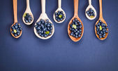 Blueberries in wooden spoons — Stockfoto