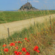 Mont Saint Michel Brittany France — Stock Photo #65782853