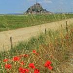 Mont Saint Michel Brittany France — Stock Photo #65782853
