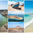 Picture montage of Sal island landscapes  in Cape Verde archipel — Stock Photo #64004391