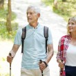 Active senior couple walking  in the forest — Stock Photo #78885988