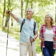 Active senior couple walking  in the forest — Stock Photo #78886004