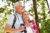 Senior people enjoying a walk together. — Stock Photo