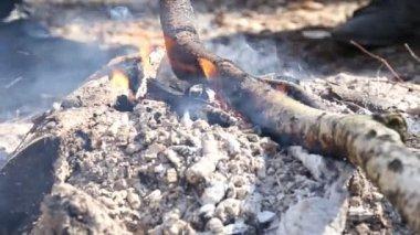 Burning fire — Stock Video