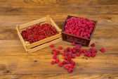 Currants and raspberries — Stock Photo
