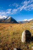 Stone, glacier, meadow — Stock Photo