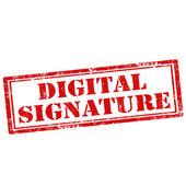 Digital Signature — Stock Vector