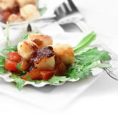 Scallops Salad Crop — Stock Photo