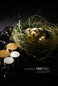 Investment Nest Egg III — Stock Photo