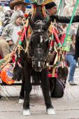 Carnival festival — Stok fotoğraf