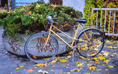 Colorful bicycle — Stock Photo