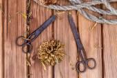 Vintage nůžky a provázkem s květy — Stock fotografie
