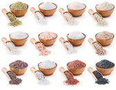 Collection of different types of salt isolated on white — ストック写真