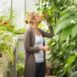 Florists woman working in greenhouse. — Stock Photo #51939747