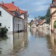 Flooded street — Stock Photo #53515127