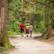 Family walking in the woods — Stock Photo #58775151