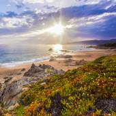 Coastal landscape on Corse, France, Europe. — Stock Photo