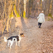 Woman walking her mixed bred dog. — Stock fotografie