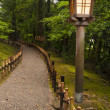 Traditional lantern in japanese garden — Stock Photo #66485685