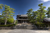 Main shrine of Hasedera temple with pagoda, Nara, Japan — Stock Photo