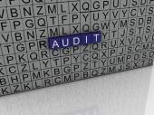 3d image Audit issues concept word cloud background — Stock Photo