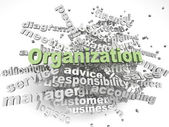 3d imagen Organization  issues concept word cloud background — Stock Photo