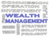 3d image wealth management  issues concept word cloud background — Stock Photo