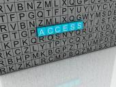 3d image Access  issues concept word cloud background — Stock Photo