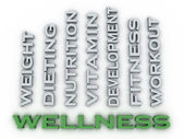 3d image Wellness  issues concept word cloud background — Stock Photo