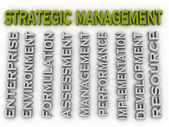 3d image Strategic management issues concept word cloud backgrou — Stock Photo
