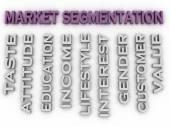 3d image Market segmentation  issues concept word cloud backgrou — Stock Photo