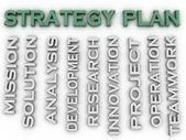 3d image Strategy plan issues concept word cloud background — Stock Photo