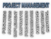 3d image Project management issues concept word cloud background — Stock Photo