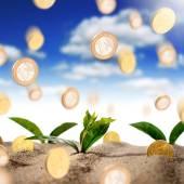 Making money concept — Stock Photo