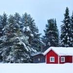 Finnish house — Stock Photo #54100541