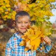 Cute boy with autumn leaves — Stock Photo #56278447