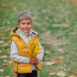 Cute boy with autumn leaves — Stock Photo #56529067