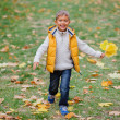Cute boy with autumn leaves — Stock Photo #56529247