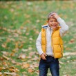 Cute boy with autumn leaves — Stock Photo #56529263