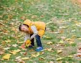 Cute boy with autumn leaves — Стоковое фото