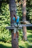 Girl in a climbing adventure park — Стоковое фото