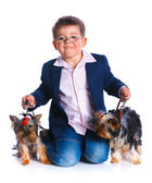 Boy with his Yorkshire terriers — Stock Photo