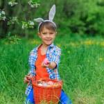 Little boy wearing bunny ears — Stock Photo #73237459