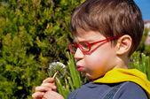 Kid blowing dandelion — Stock Photo