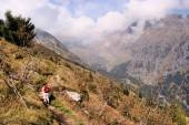 Hiking to the Spronser Lakes in South Tyrol — Stock Photo