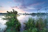 Красивый Туманный рассвет на дикие озера — Стоковое фото