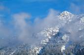 Mountain peak in winter clouds — Stock Photo