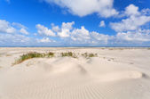 Sand dunes and blue sky at coast — Stockfoto