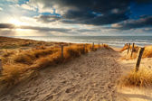 Sunset over sand path to North sea — Stock Photo
